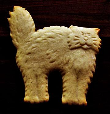 catcookie2